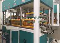 Automatic Pulp Molding Equipment Electronic Packing Tray Thermoforming Machinery