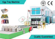 Professional Rotary Egg Tray Machine Multi - Layer Dryer Egg Tray Production Line